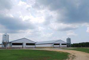 Farms010